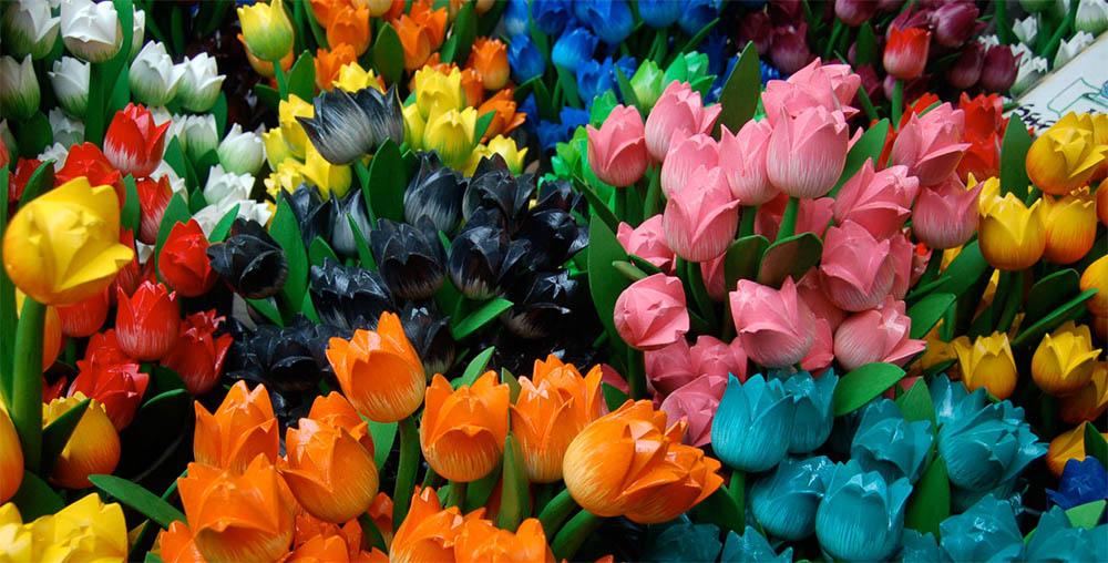 tulipani-legno-amsterdam